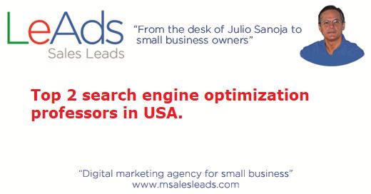 Search Engine Optimization Professors