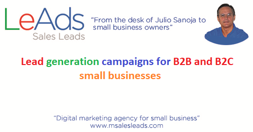 Lead generation campaigns for small businesses